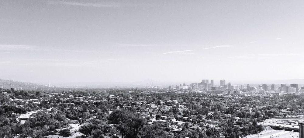 Los Angeles, California Los Ángeles Downtown Downtown Los Angeles Skyline Sky Panorama Blackandwhite Black And White Black & White