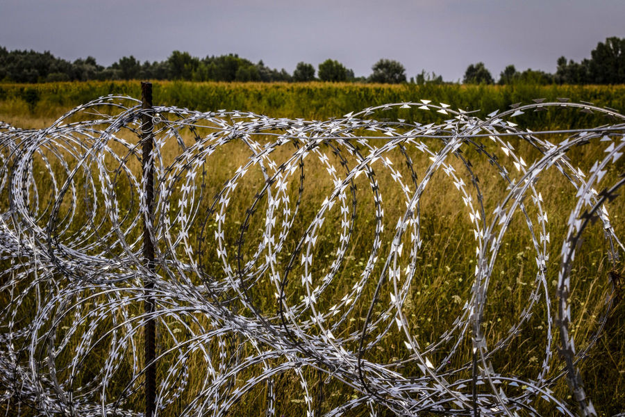 Firewall against illegal immigrants and refugees on the border between Hungary and Serbia Barbed Wire Barbed Wire Fence Border Borderline Fence Firewall Frontier Frontière No People Outdoors State Border