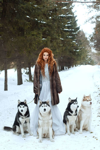 EyeEm Nature Lover EyeEm Ready   Animal Themes Beauty Beauty In Nature Cold Temperature Day Dog Domestic Animals Eye4photography  Forest Full Length Long Hair Looking At Camera Nature One Person Outdoors Pets Portrait Redhead Snow Tree Warm Clothing Winter Young Adult