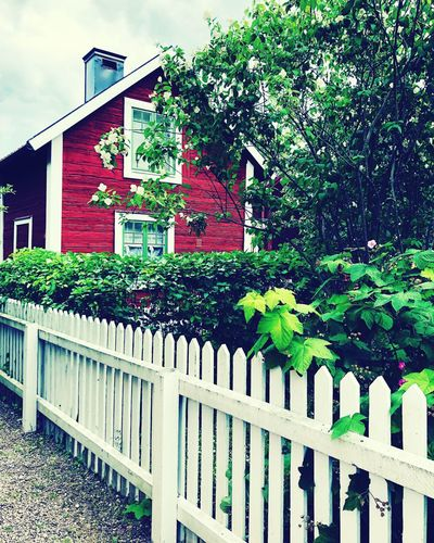 Old Linköping Midsommar Vintage Sweden Vintge Building Exterior Architecture Built Structure Plant Boundary Fence Barrier Nature Sky Picket Fence Green Color Outdoors Building Day Tree