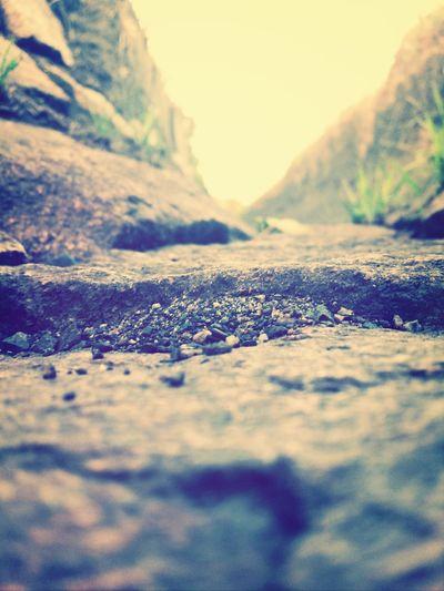 Enjoying Life EyeEm Nature Lover Walking Around On The Road