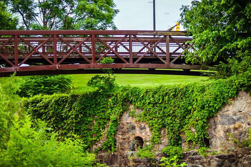 View of bridge in park