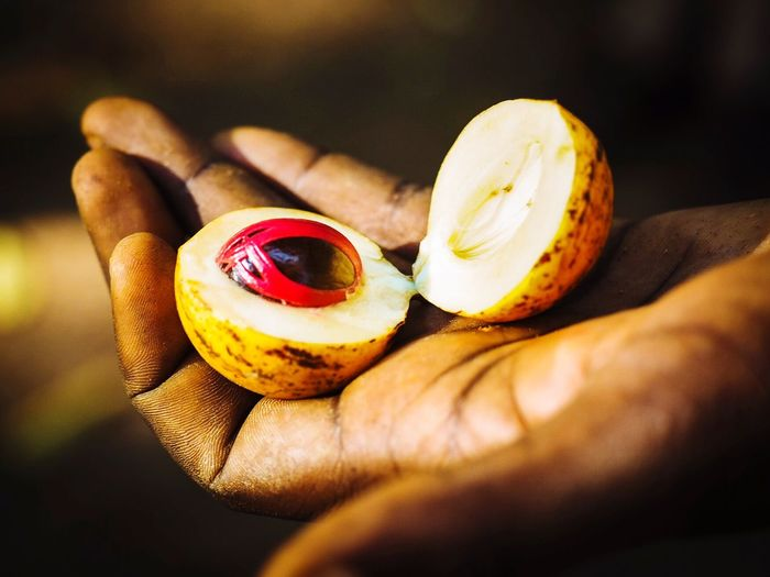 Red Nutmeg Spice Unrecognizable Person Close-up Food Healthy Eating Freshness