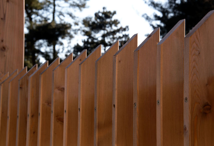 View along a stylish modern timber fence/ privacy screen, with angle cut top - fresh construction, - architectural spaced timber slats/posts Copy Space Home Improvement Privacy Screen Abstract Background Angled Top Architectural Brown Close Up Close-up Contemporary Contemporary Design Day Design Fence Garden Design No People Outdoors Pattern Posts Repetition Slats Time Tree Wood - Material