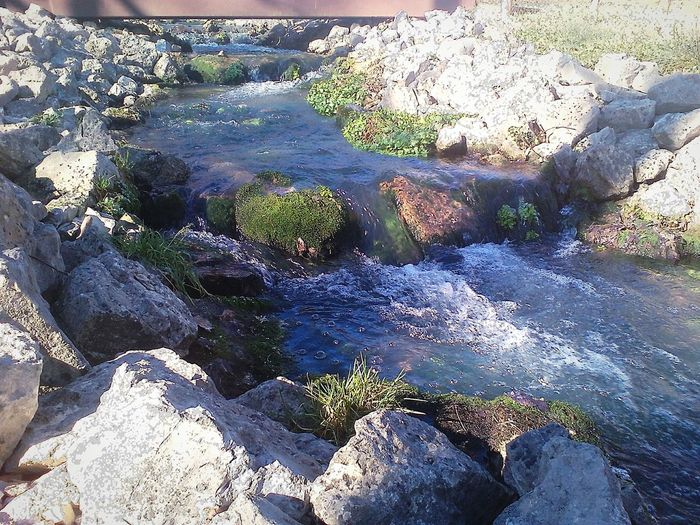 Flooded by nearby raging Lake Taneycomo just two weeks ago, this Ozarks Stream at Shepherd Of The Hills Fish Hatchery is now reborn. Streamzoofamily Showcase: January