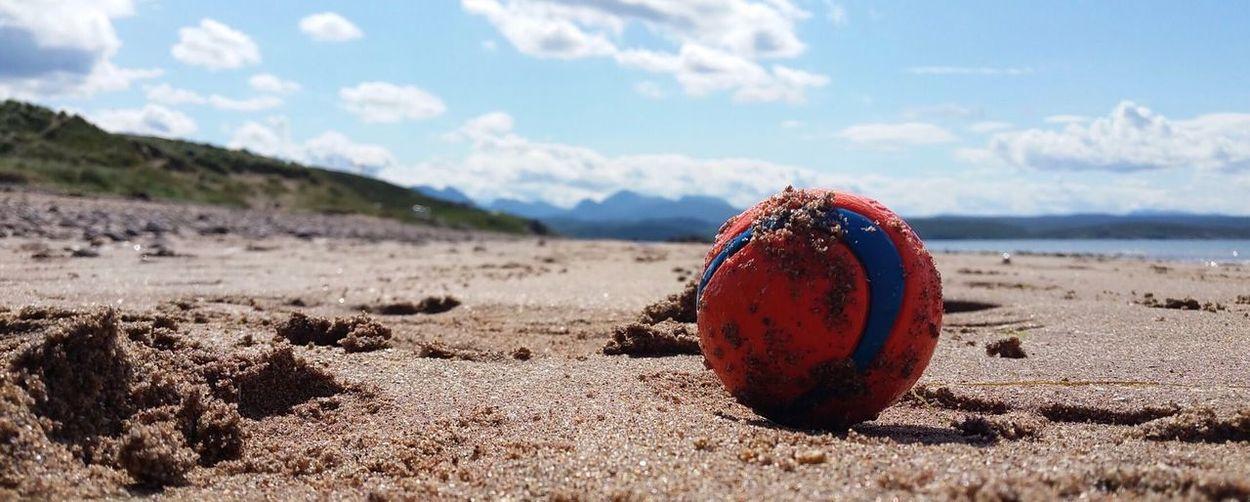 Dog ball Beach,