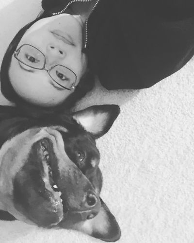 When it's below freezing and you are stuck indoors...(also when your fur child has a bigger head than you 😏) ThatsMe Ussies Fur Baby Black And White Photography Lasian Tank The Rottie I Love My Rottie Perrijo Portrait Pets Domestic Real People Glasses One Person Mammal Headshot Indoors  Canine