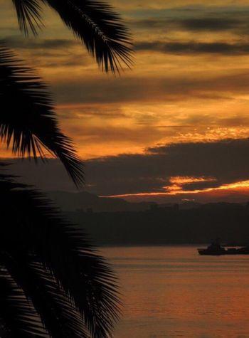 Good Morning Sunrise Sunrise_Collection Dramatic Sky Sunrise - Dawn Sunrise Colors Sunrise And Clouds Sunrise Porn Sunrise Silhouette Palm Leaf Ship Sunrise From My Office Window Bay Of Valparaiso