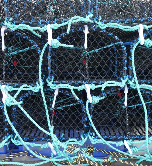 Lobster pots Lobster Pots No People Full Frame Fishing Industry Fishing Day Rope Net - Sports Equipment Blue Close-up