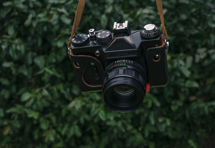 Close-up of camera hanging against plants