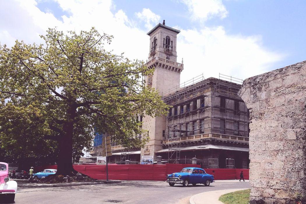 clásicos car's City Tree Clock Tower Clock Car Sky Architecture Building Exterior Cloud - Sky Built Structure