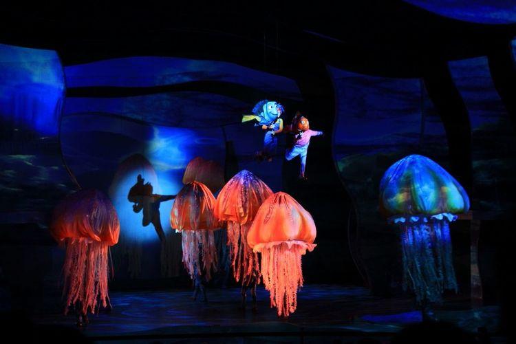 Mydisneyside Shadows & Light Sea Life live Nemo show, Animal Kingdom, Walt Disney World. ISO 1600, no flash