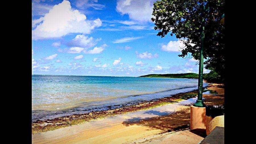 Beach Sea Horizon Over Water Sky Shore Blue Water Sand Cloud Nature Coastline