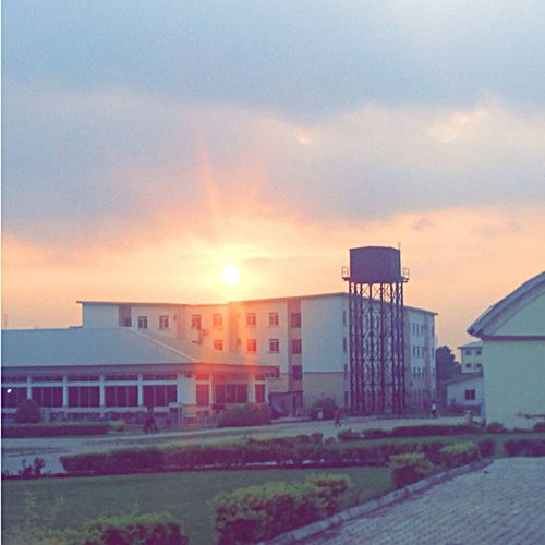 A beautiful shot at my campus Sunset Beauty In Nature