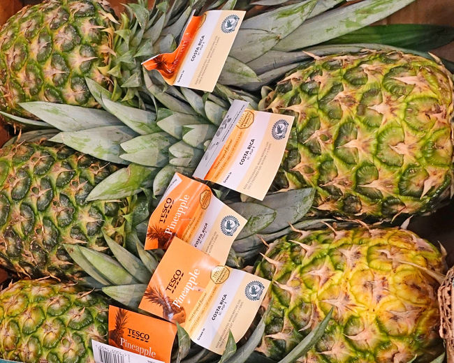 Plastic labelling on each fresh pineapple in supermarket Exotic Fruit Pineapples For Sale Deliscious Eat Me Grows On The Ground Pinapples Sweet Fruit Uk Supermarket End Plastic Pollution
