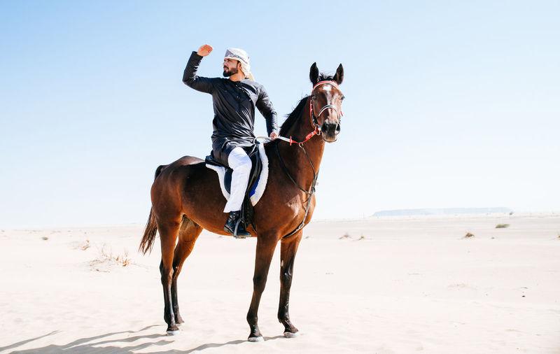 Man with horse on desert