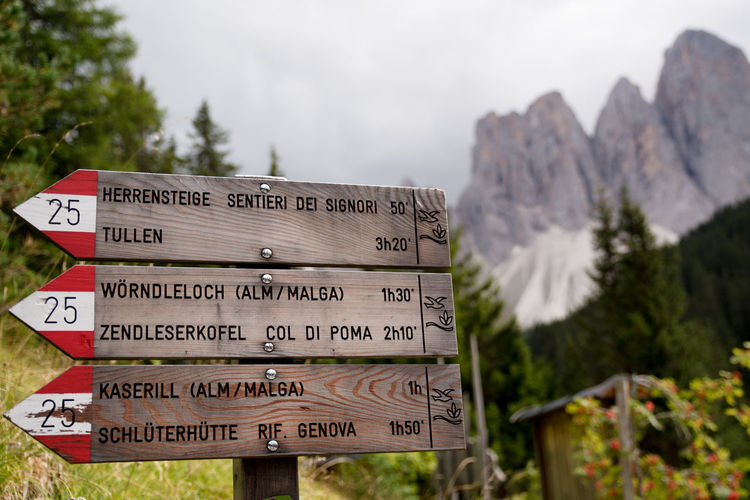Close-up of information sign against trees