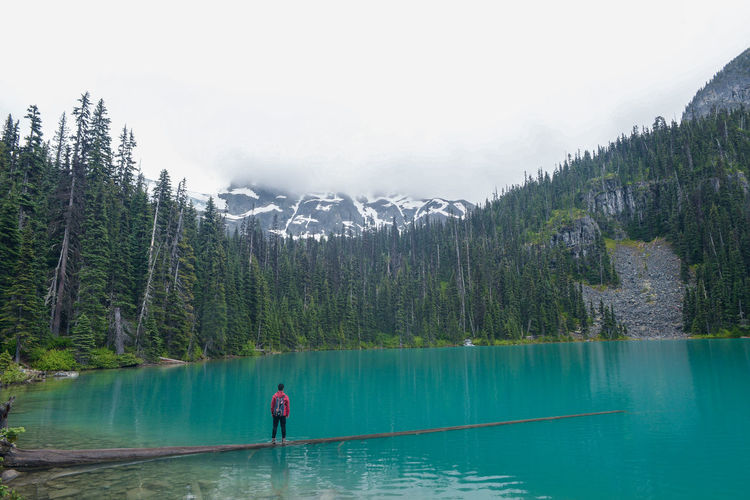 Joffre Lakes Beauty In Nature Forest Idyllic Lake Leisure Activity Lifestyles Looking At View Mountain Nature One Person Outdoors Plant Real People Rear View Scenics - Nature Standing Tranquil Scene Tranquility Tree Turquoise Colored Water