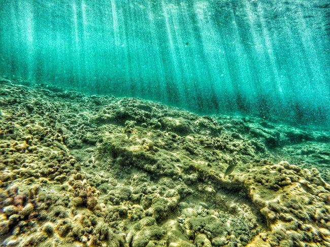 Goprohero4 Gopro Beahero Diving Traveling Traveling Photography