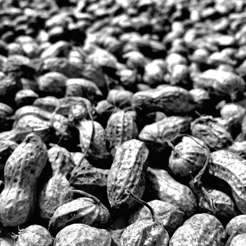 Peanut Iphone 6 Black And White Travel Photography