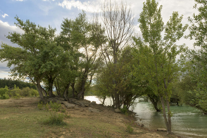 Alloz Beauty In Nature Clounds  Day Forest Growth Lake Landscape Nature Nature Navarra No People Outdoors River Scenics Sky SPAIN Tranquility Tree Water