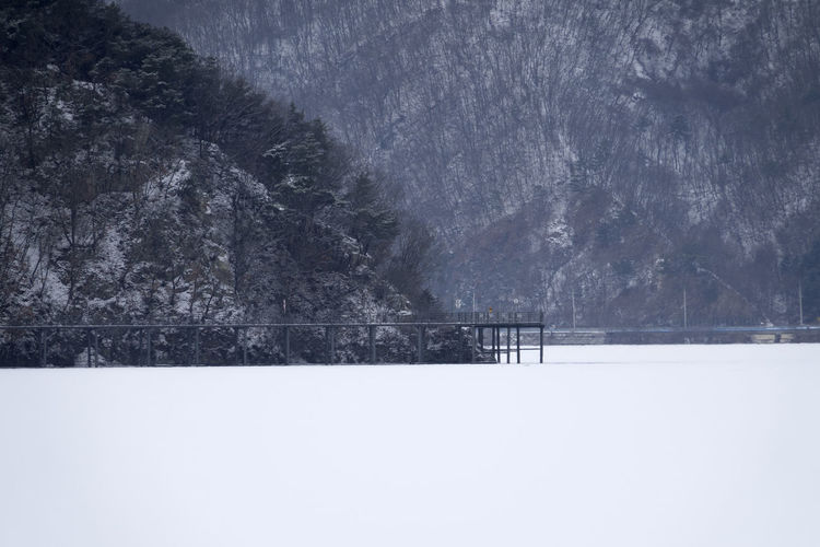 winter landscape of Uiamho Lake with migratory ducks in Chuncheon, Gangwondo, South Korea ChunCheon Cold Lake Frozen Gongjicheon Ice Nature Uiamho Lake Beauty In Nature Cold Temperature Day Duck Ducks Frozen Lake Lake View Mountain Nature No People Outdoors Scenics Sky Snow Snowing Tranquil Scene Tranquility Tree Weather White Lake Winter Winter Lake