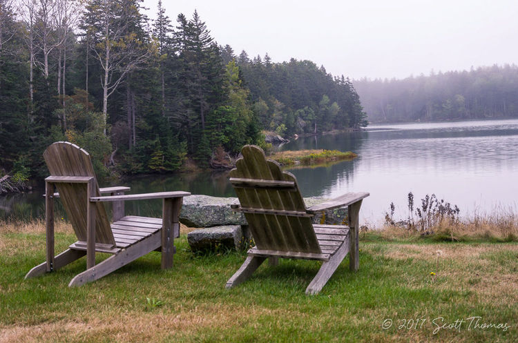 Adirondack chairs watch the fog dissolve over the bay Adirondack Chairs Beauty In Nature Chair Day Fog Grass Growth Lake Nature No People Outdoors Relaxation Scenics Sky Tranquil Scene Tranquility Tree Water Water View