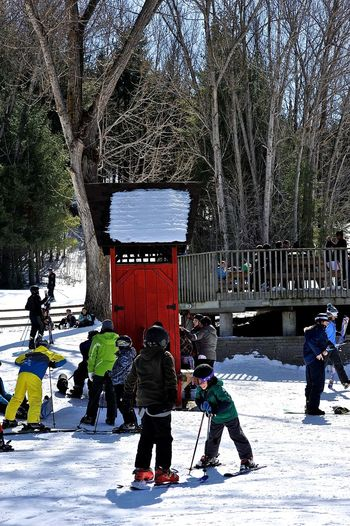 ski resort Adult Adults Only Cold Temperature Day Hill Outdoors People People Watching Ski Snow Snow ❄ Tree Trees Winter