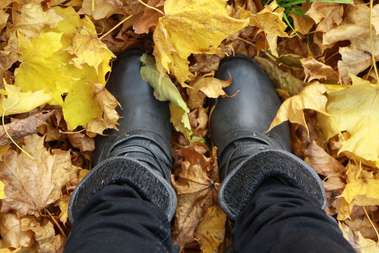 Autumn Autumn colors Autumn Leaves Mustang Autumn Body Part Change Dry Feet Human Body Part Human Foot Human Leg Jeans Leaf Leaves Legs Low Section Outdoors Personal Perspective Real People Shoe Standing Unrecognizable Person осенние листья осень