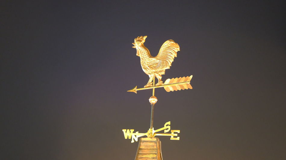 Berlin Weathercock Animal Representation Cockerel Direction Guidance Illuminated Low Angle View Night No People Outdoors Rooster Weather Vane