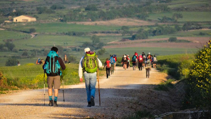 Rear view of hikers walking on footpath
