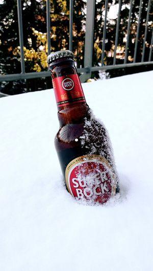 Super Bock Beer - Alcohol Beers SuperBockSuperRock Superbock Snow Cold Temperature Winter Christmas Christmas Decoration Close-up