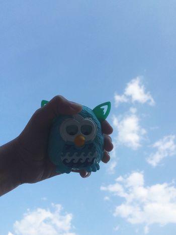 Googly Eyes Furby ni the sky now yayyyy!!! Vscocam OpenEdit VSCO EyeEm EyeemTeam Instapic Blue Sky Googlyeyes