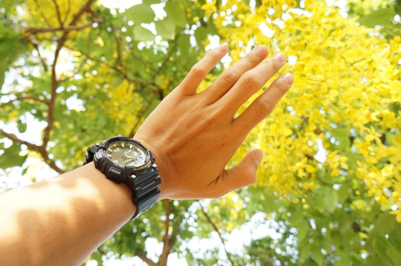 Cropped image of hand wearing wristwatch against trees