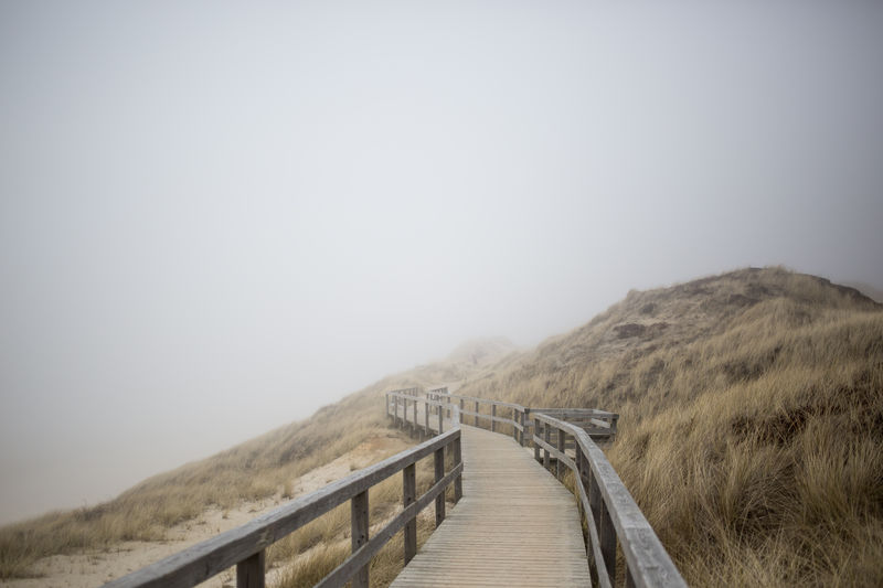 Beach Beachphotography Beauty In Nature Day Fog Grass Landscape Misty Mystic No People Northsea Outdoors Sand Sand Dune Scenics Seaside Symmetry Tranquility Travel Destinations Water Wood - Material