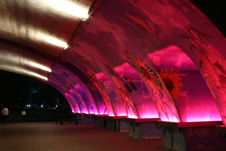 Architecture Ceiling Illuminated Night