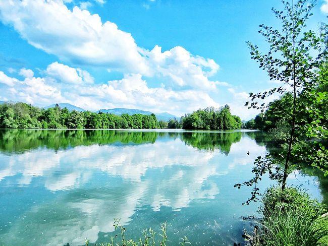 A calm water always has something to hide. Austria Salzburg Lake Lake View Europe Eurotrip Europein50days Green FlirtingWithNature