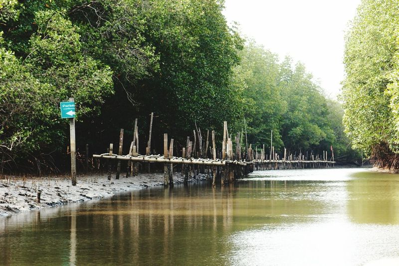 canal and brigde at Prasae Rayong Nature Telling Stories Differently Taking Photos The Nature And Lifestyle คลองที่จะเชื่อมต่อปากน้ำประแสร์จังหวัดระยอง