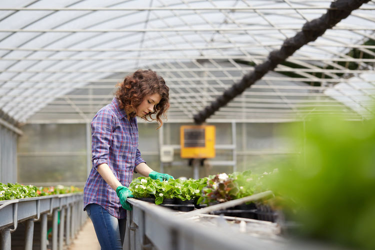 Woman working over plants in greenhouse
