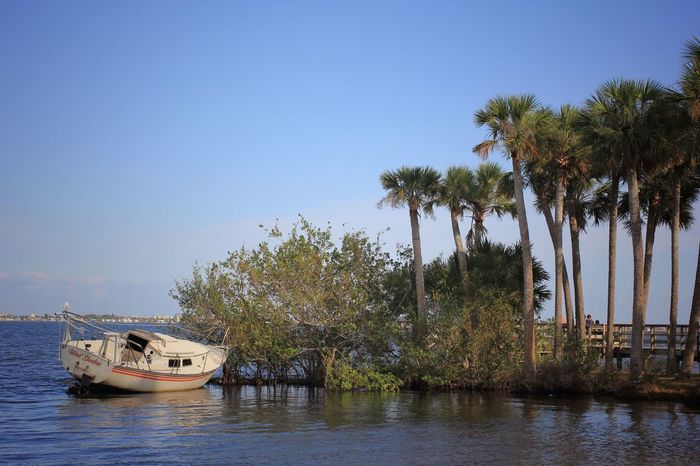 Causality at Castaway Point Shipwreck Ship Wreck Nautical Vessel Sailboat Indian River Lagoon Melbourne Florida Castaway Point