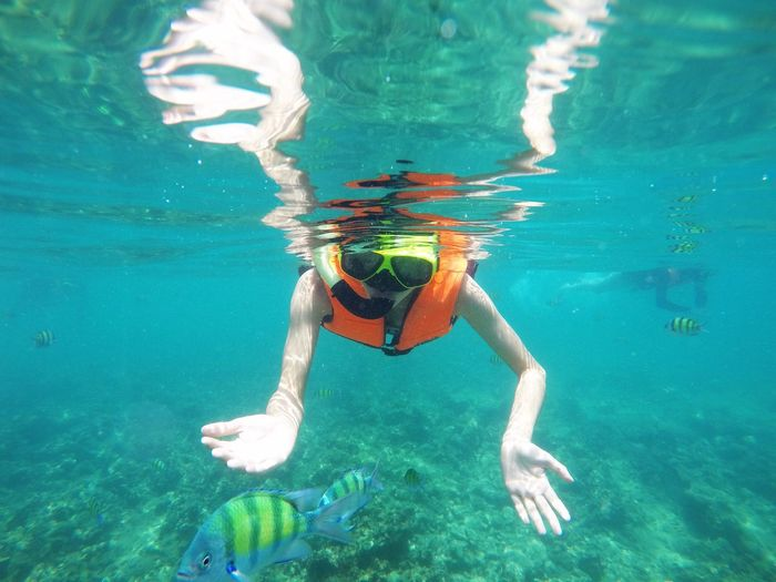 swimming see fish Adventure Aquatic Sport Exploration Eyewear Holiday Leisure Activity Lifestyles Nature One Person Outdoors Real People Sea Snorkeling Sport Swimming Trip UnderSea Underwater Underwater Diving Vacations Water My Best Travel Photo
