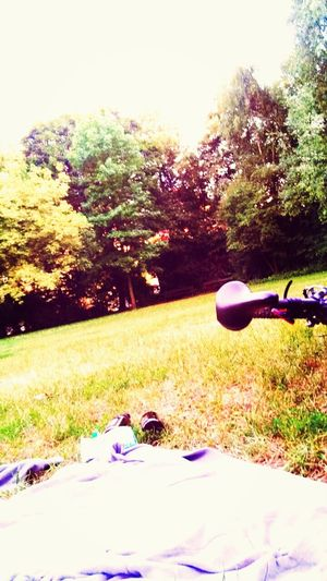 25 Days Of Summer Hanging Out Taking Photos Summertime