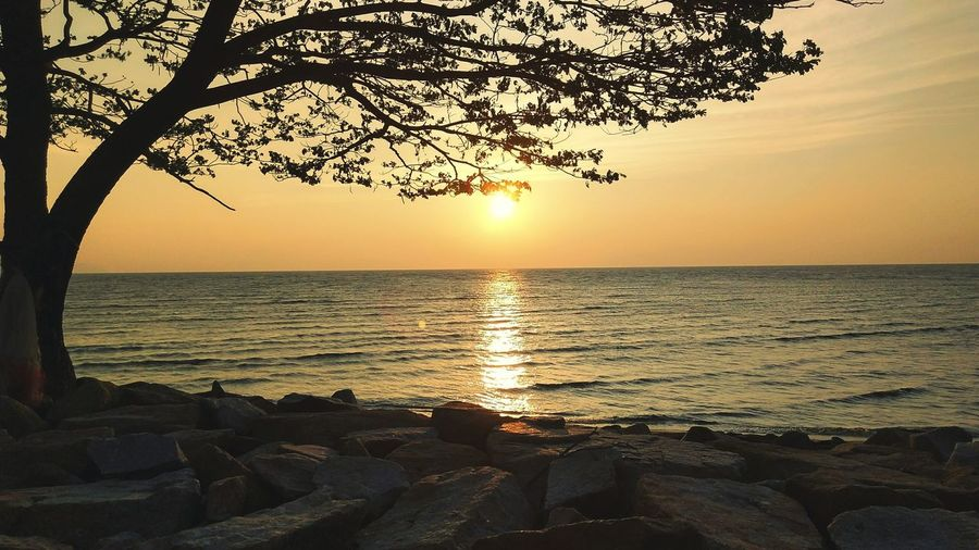 Sunset Sea Nature Water Travel Tree Beach Beauty In Nature Sky Relaxation Tourism Travel Destinations Outdoors Vacations Tranquility Sun Scenics Horizon Over Water No People Postcard