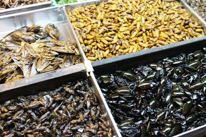 Pattaya Bangkok Thailand. Extremefood Musttry  Food Photography Food Insects  -pattaya walking street-