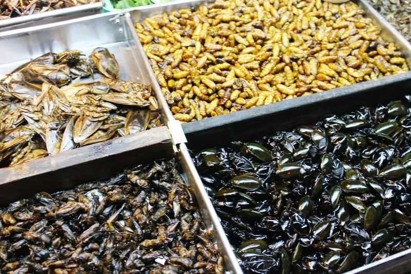 Pattaya Bangkok Thailand. Extremefood Musttry  Food Photography Food Insects  -pattaya walking street-