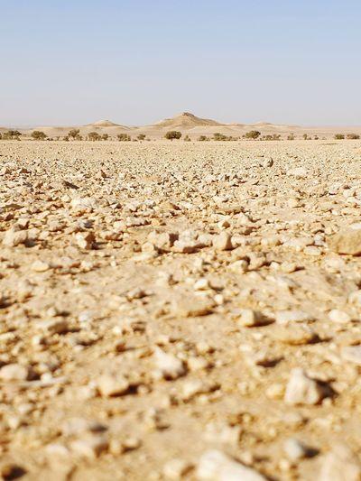Surface level of desert against clear sky