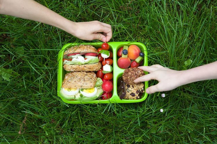 Food Foodphotography Freshness Fruit Healthy Eating Hungry Lunchbox Ready-to-eat Variation Vegetable