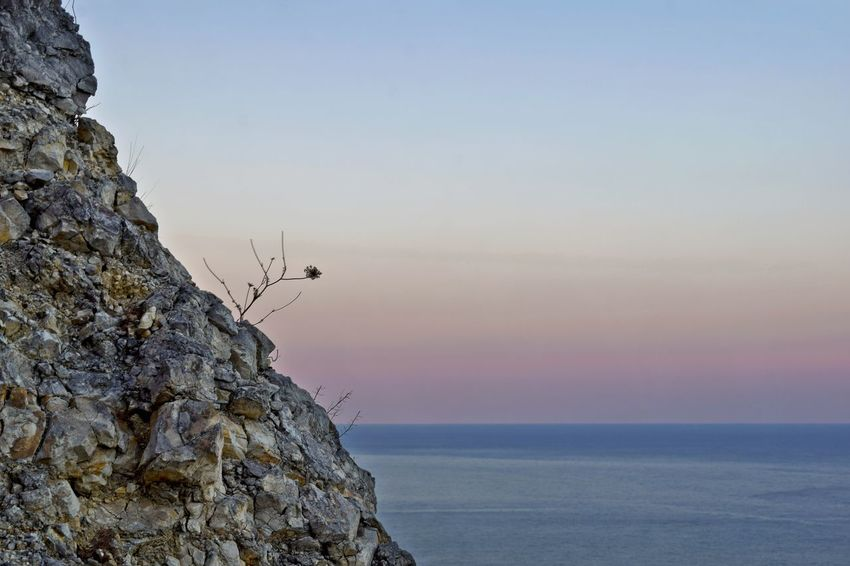 Rock - Object Outdoors Summer Sunset Sea Landscape Water Beauty In Nature Horizon Over Water No People Nature Sky Day Nikon D3300 Travel Travel Destinations Tranquil Scene Nikond3300 Tranquility Coast Nature Flower Flowers Beauty In Nature Close-up