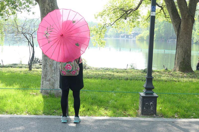 Umbrella One