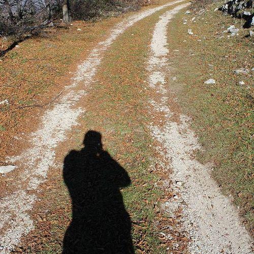 Sentiero o Strada Igers_salerno Igerscampania Igeritalia Dafareasalerno Dafareincampania Nature Naturelover Instanature Yellow Roadtrip Winter Dafareasassano